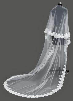 Uno capa Velos de novia catedral con Con Aplicación de encaje