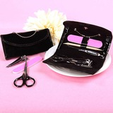 Purse Stainless Steel Manicure Kit