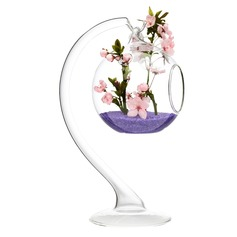 Fancy Hanging Glass Vases(Flowers Not Include)