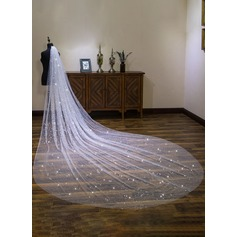 One-tier Cut Edge Cathedral Bridal Veils With Lace (006190584)