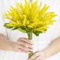Kwiat jedwabiu/Plastikowy Druhny Bukiety/Dekoracje (Sprzedawane w jednym kawałku) -