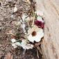 Piękny Kwiat jedwabiu/Symulacja rattan Opaski